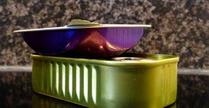 Eine lila Metall-Dose steht auf einer Sardinendose