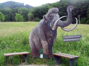 Ein großes Mammut-Form steht mitten in der Wiese zwischen zwei Bänken.