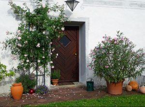 Eine weiße Hauswand mit Mustern bemalt, eine Eingangstür. Ein Oleander und ein Rosenstock stehen jeweils neben der Tür und auch viele Terracotta-Töpfe.