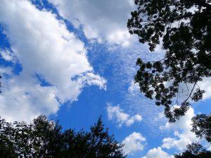Von der ersten Bank bzw. Liege ein Blick in den Himmel. Man sieht Bäume, den blauen Himmel und Wolken vorbeiziehen.