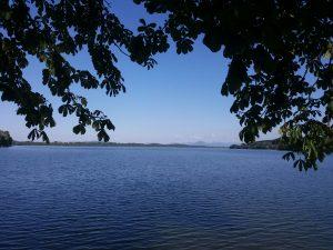 Im Vordergrund ist der Waginger See, ein wunderschönes Blau und Äste hängen vom Baum unter dem ich sitze.  In der Ferne ist der Untersberg.