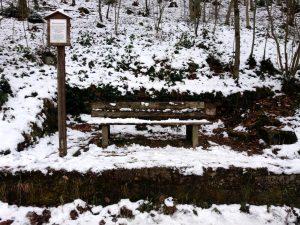 Ein Bankerl am verschneiten Waldesrand
