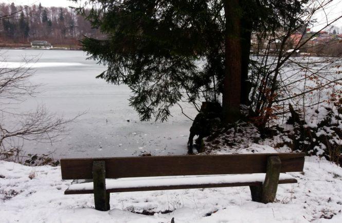 Höglwörth See - Bank am zugefrorenen See