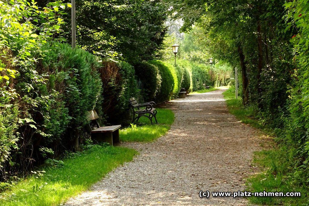 Ein Kiesweg führt geradeaus, links davon an der Hecke stehen in Abständen Bänke