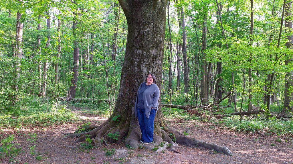 Ich stehe vor einem großen alten Baum im Auwald an der Altglan