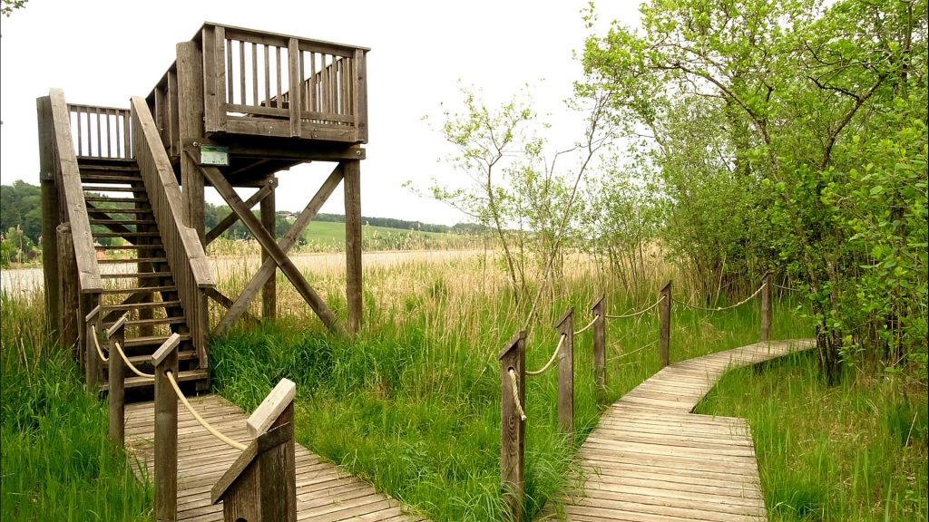 Aussichtsplattform aus Holz mit dem Holzweg im Vordergrund
