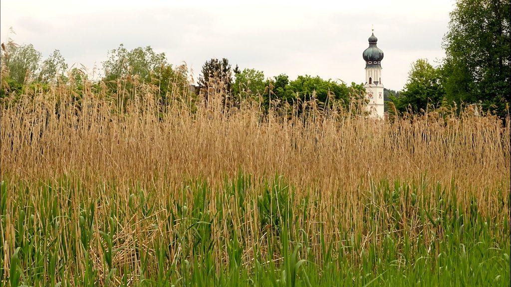 Blick auf den Kirchturm von Obertrum