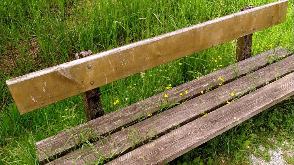 Eine Holzbank aus der Planken aus der Sitzfläche Blumen wachsen