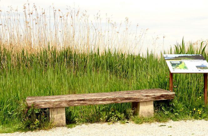 Rustikale Bank neben der Informationstafel zum Naturerlebnisweg