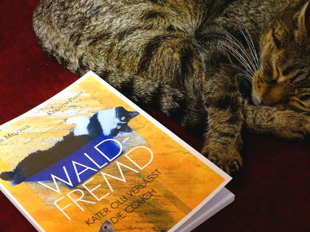 Foto von meinem Tigerkater mit dem Buch